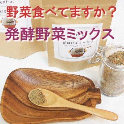 画像1: 【手軽に酵素・乳酸菌・食物繊維の摂取が可能!】Funfun 発酵野菜ミックス 100g