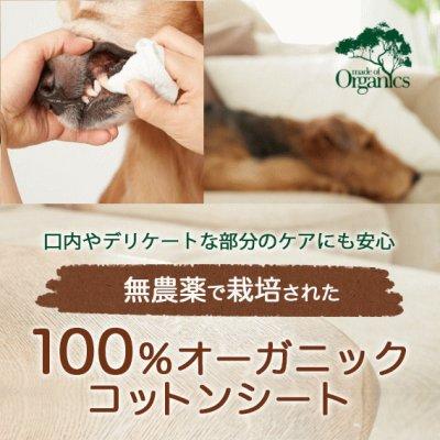 画像1: 【無農薬栽培の100%オーガニックコットンシート!】オーガニック コットンシート 80枚入り