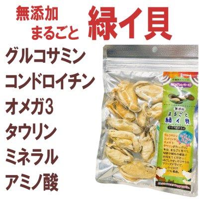 画像1: 【関節や被毛の健康にどうぞ!】まるごと緑イ貝 30g