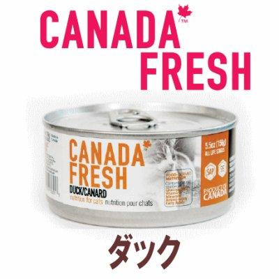 画像1: 【期限特価】カナダフレッシュ キャットフード缶 ダック 156g