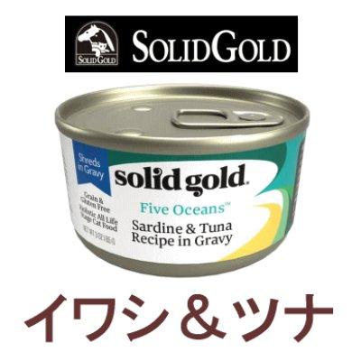 画像1: ソリッドゴールド キャットフード缶 イワシ&ツナ 85g