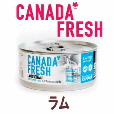 画像1: 【期限特価】カナダフレッシュ キャットフード缶 ラム 156g