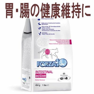 画像1: フォルツァ10(FORZA10) キャットフード インテスティナルアクティブ