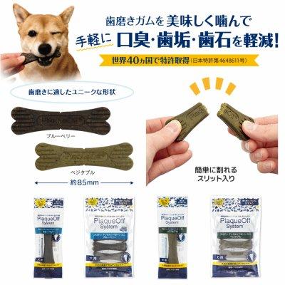 画像1: 【楽しく美味しく噛める歯磨きガム!】プロデン デンタルケアボーンミニ