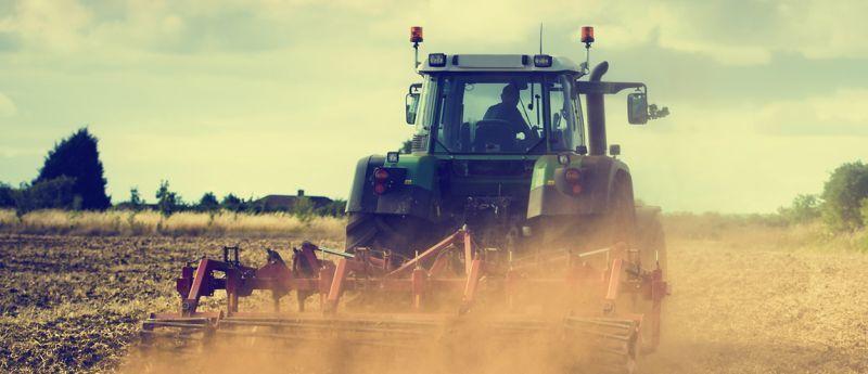 ボッシュ契約農家